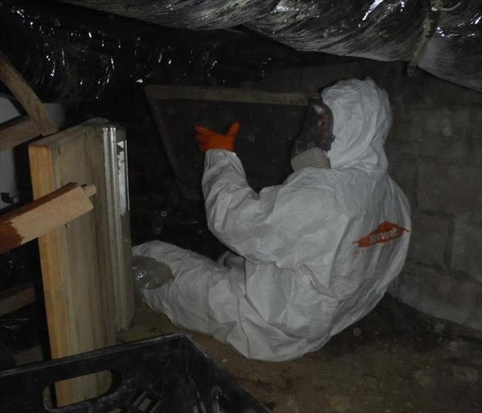 Crawl Space Mold Removal in Point Pleasant