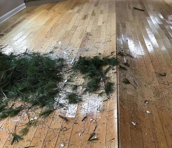 Image shows the damage on the living room floor after multiple trees fell on the roof