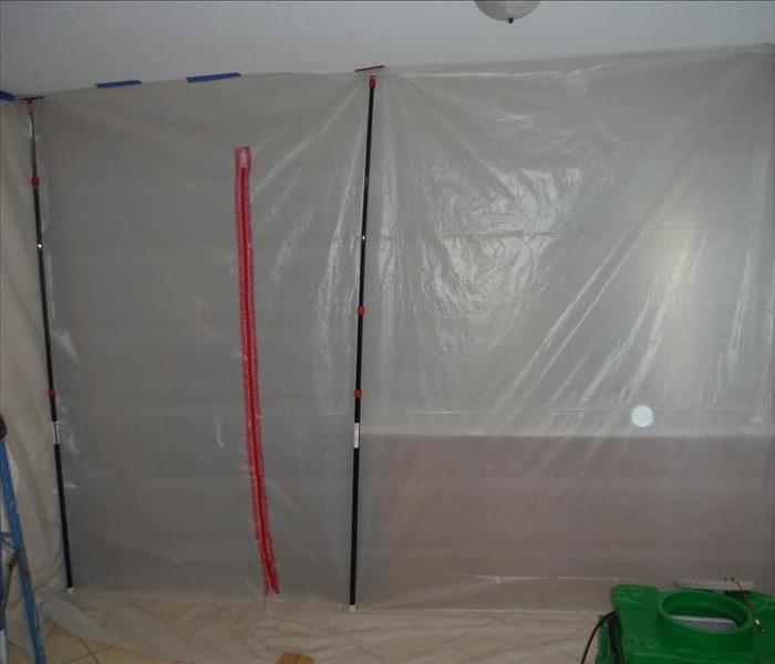 Mold Remediation Mold and the Mold Remediation Process