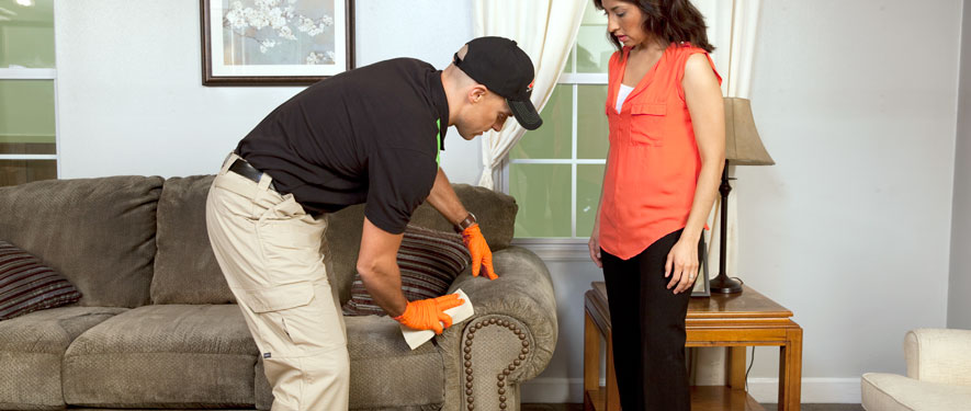 Toms River, NJ carpet upholstery cleaning