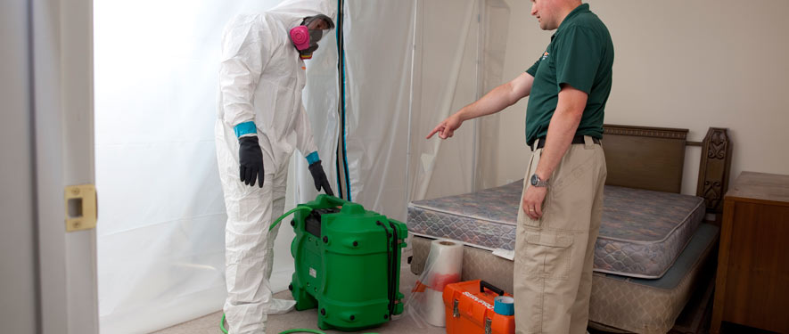 Toms River, NJ mold removal process